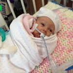 Anna Catherine Update 04/27/2014